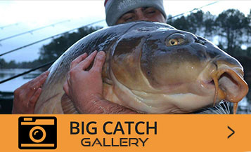 Big Catch Gallery