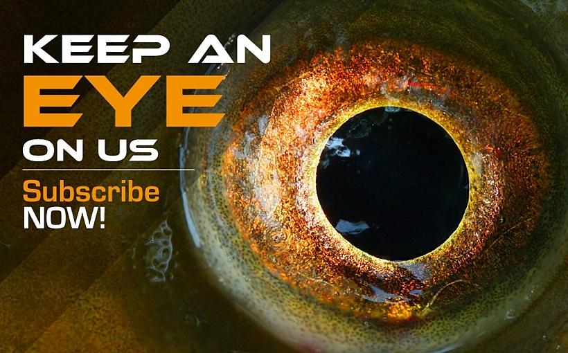Keep an Eye on Us_4718